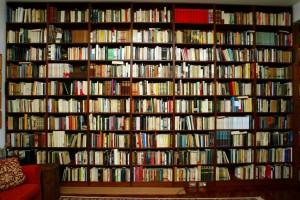 biblioteca1-1024x684